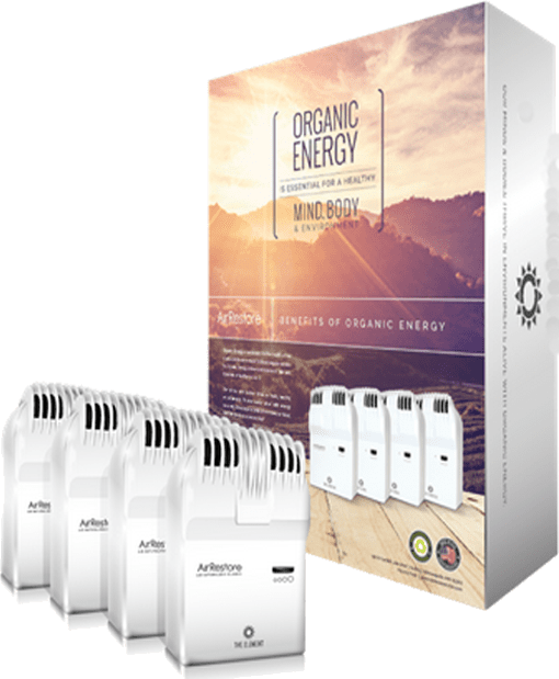 Air Naturalizer Whole Home System, air purifier, air energizer, energized air, AirRestore, whole home system